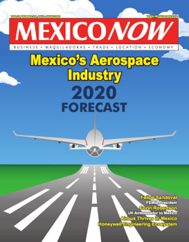 MEXICONOW Issue 101