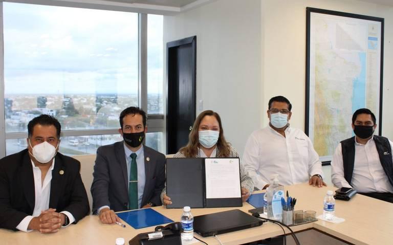 Solar energy companies sign agreement in Tamaulipas