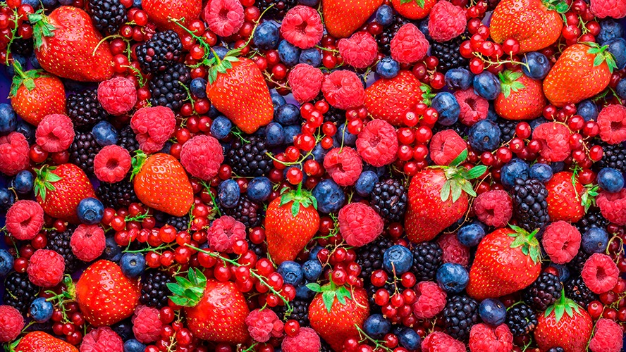 Exports of Mexican berries increase
