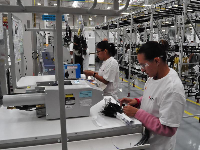 Juarez leads in job creation